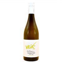 Sauvignon Blanc Ried Hohe Lage 2019