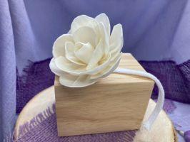 Diffuserblume – Große Lotus auf Schnur