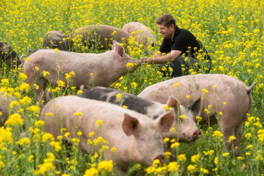 Für Flur und Feld sowie die Tiere sind die Herren ...