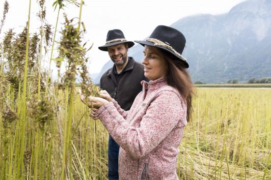 Hanfpioniere in Osttirol: Nutzhanfanbau seit 2016