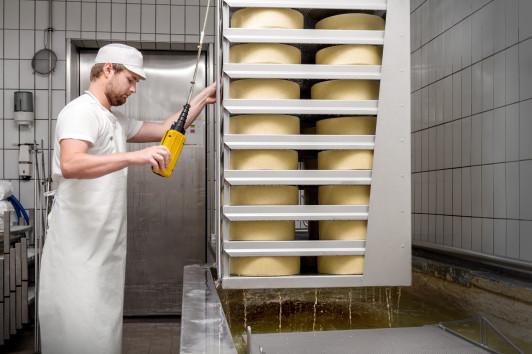 die frisch erzeugten Käse kommen ins Salzbad