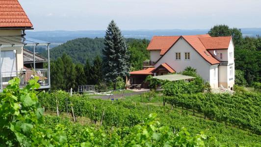 Der Ludwigshof umgeben von Weingärten