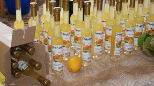 Bio-Orangello bei den Zitrustagen in Schönbrunn