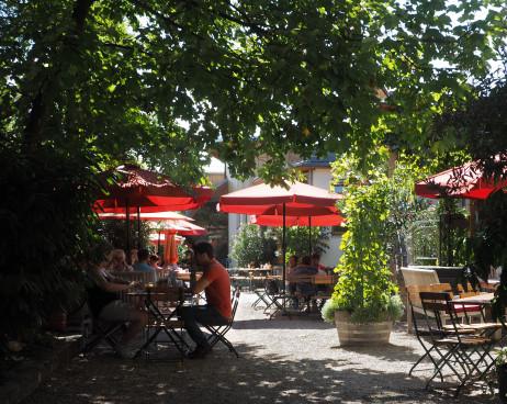 Der gemütliche Gastgarten vom Heurigen des Weingut...
