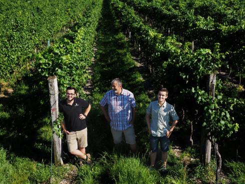 Vater mit seinen Söhnen im Weingarten