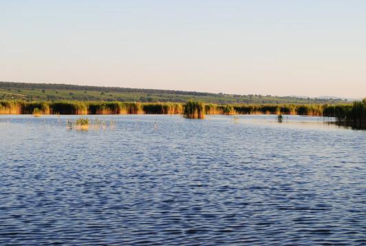 Klima und Reifefaktor Neusiedlersee für die Weinre...