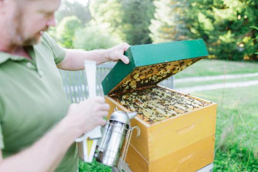 Bienenvermietung Manninger