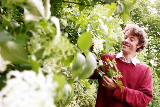 Michael Diewald sammelt Wildpflanzen