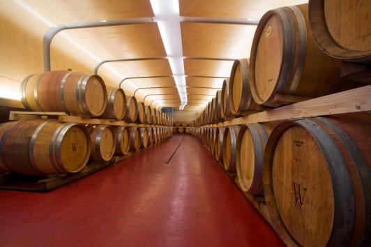 Fasskeller - Reifung unserer Rotweine