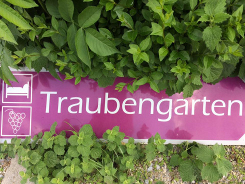 Hinweisschild zum Traubengarten
