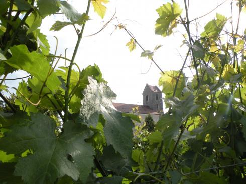 Hohenwarth - das Tor zum Weinviertel