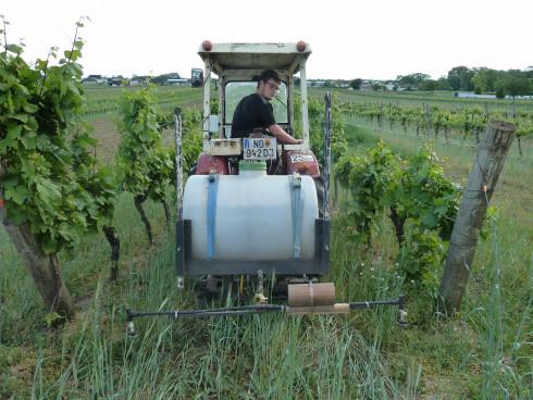 Sebastian, auf seinem Traktor, den er selber mit s...
