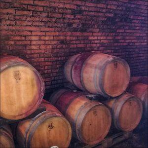 Wir bauen Rot-, aber auch Weißweine z.T. in Barriq...