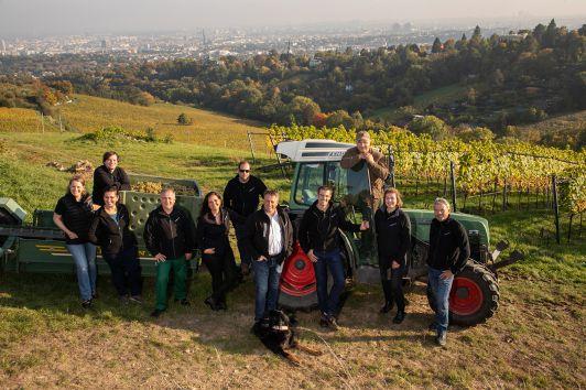 Team Weingut Cobenzl