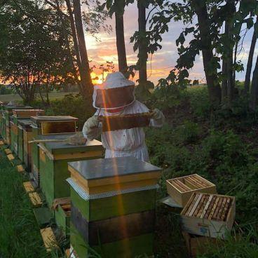 Bettina bei ihren süßen Bienchen