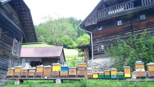 Wanderbienenstand in Tragöß